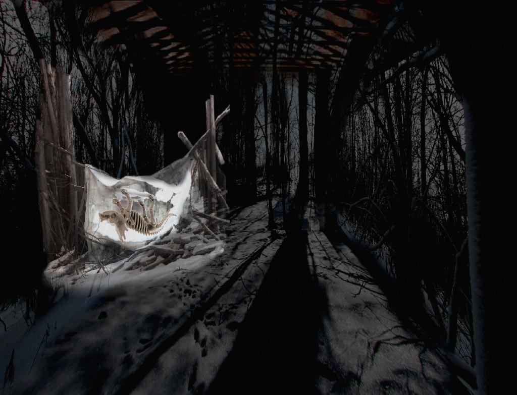 Forêt chamanique #3